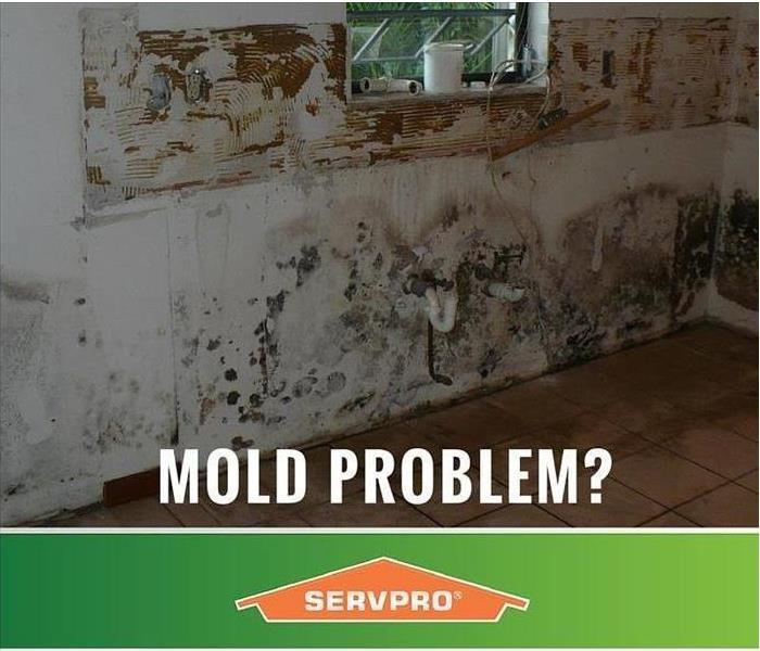 Mold Remediation Containment During a Mold Remediation: How Important is It?