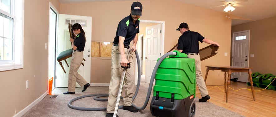 Harrisonburg, VA cleaning services
