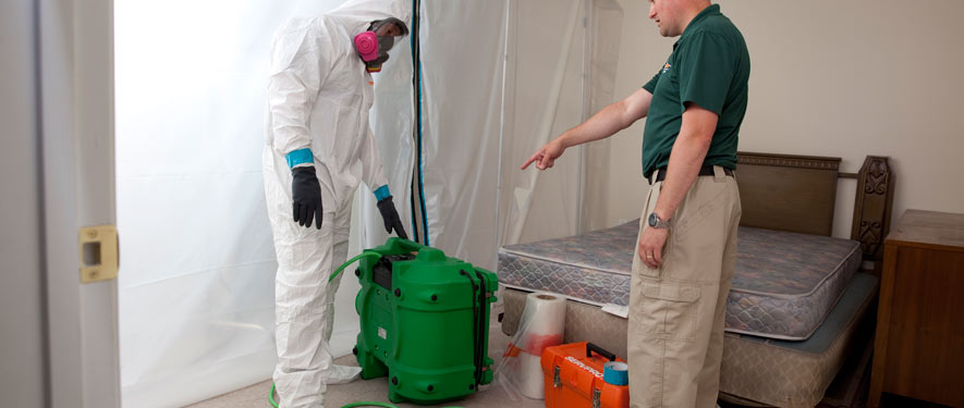 Harrisonburg, VA mold removal process